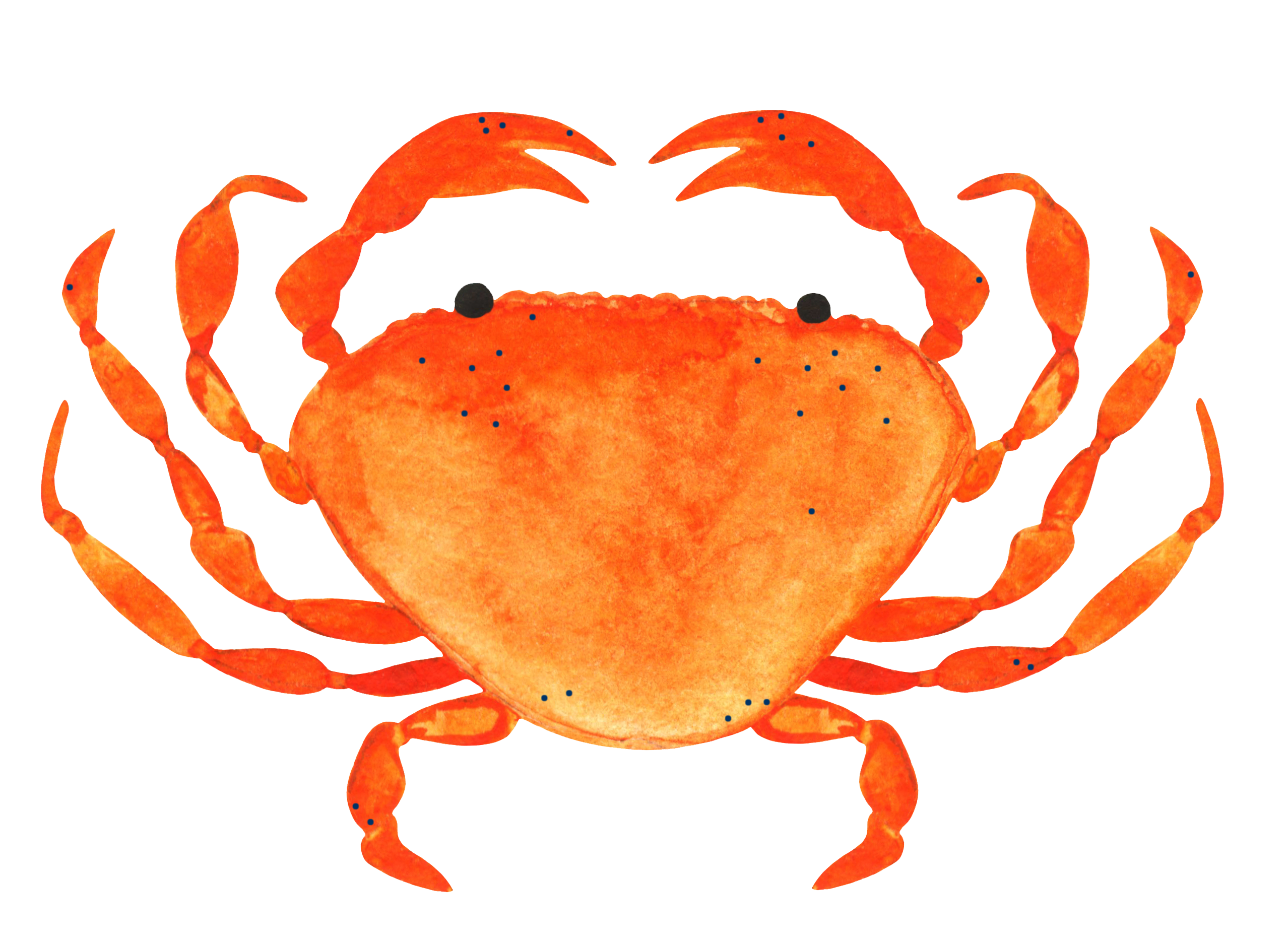 freckled crab